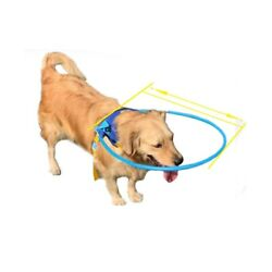 Safe Halo* Harness for Blind Dogs Soft Protective Vest Ring Anti Collide Wall US