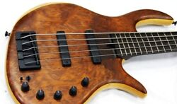 Very Rare Elrick Gold Series E-volution 5st Bass Ready To Go