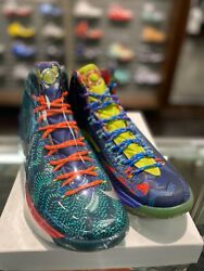 Nike Kevin Durant Kd 5 V Premium What The Kd Wtkd Multi Color 598601-400 Size 11