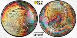 1993 Silver Eagle Pcgs Ms67 Gold Shield/true View Double Sided Monster Toned