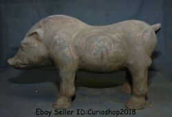 14.8 Antique Chinese Tang Sancai Pottery Painting Handmade Wild Boar Pig Statue