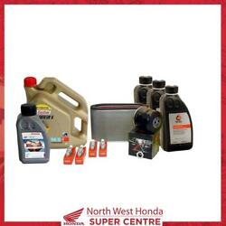 Honda Cbf600 2004-2006 Service Kit Sparkplugs Air And Oil Filters Oil Coolant