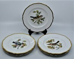 7 Spode Hand Painted China Breakfast Dessert Dishes Plates Birds England