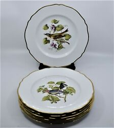 7 Lot Spode Hand Painted Bone China Dinner Dishes Plates England Birds And Flora