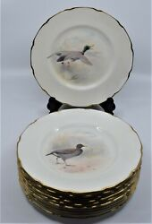 11 Royal Doulton Dinner Dishes Plates Birds Scalloped Hand Painted Wilson June
