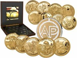 2019 African Pride 13 Nation 13 Gold Proof Coin Coins Collection Wild Nature