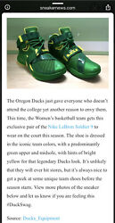 Rare Nike Lebron James Soldiers Ix 9 Oregon Ducks Team Issued Pe Only