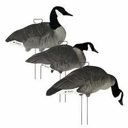 60 Pack / Tanglefree Canada Skinny Decoys Flocked Head W/ Stakes