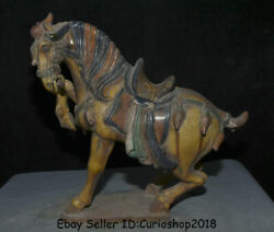 15.2 Old Chinese Tang Sancai Pottery Dynasty Zodiac Animal Yellow Horse Statue