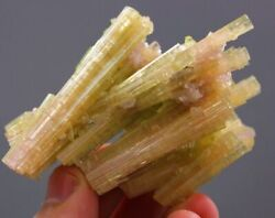 Top Quality And Rare Shape 282 Carat Well Terminated Tourmaline Bunch Of Crystal