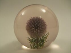 Vintage Hippocampus Embedments Real Thistle Flower Acrylic Lucite Paperweight