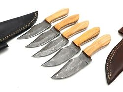 Louis Salvation Best Handmade Damascus Hunting Knife With Wood Handle 5 Pcs Set