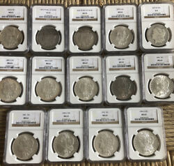 Ngc Graded Brown Label Morgan Silver Dollars. Lot Of 14 Selling Together.