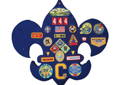 Lot Of 25 Boy Cub Scout Weblos Patches Badges Iron On Sew On Display Board