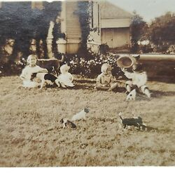 Vintage Antique Photo Children Adult Dogs Puppies Playing In Yard