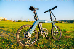 [us Direct] Fiido D11 11.6ah 36v 250w 20 Inches Folding Moped Bicycle 25km/h