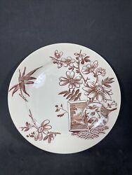 Antique Aesthetic Brown Transfer Dinner Plate Kenilworth H Alcock And Co Euc