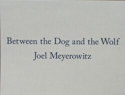 Joel Meyerowitz Between The Dog And The Wolf. Like New In Slipcase Box