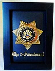 Gold Second Amendment Rights Medallion/badge Replica Pin On Display Frame