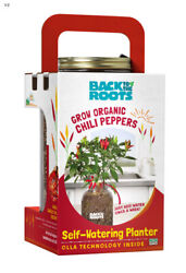 Back To The Roots Self-watering Planter Green/red/yellow Sweet Bell P -case Of 6