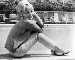 236489 Elke Sommer By Swimming Pool Affiche Poster