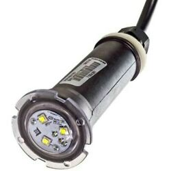 602053 Brand New Globrite Light For Pools 30ft Cable Pentair