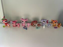 Lps Littlest Pet Shop Mommy And Baby Bird Pig Poodle Dachshund Elephant Tiger Lot