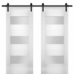 Vdomdoors Sete6003db-ws-3684 Modern Double 36x84 With Opaque Glass / Sete 6003