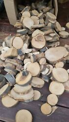 40+ Lbs Pucks And Pieces Apple Wood Chunks Smoking Bbq Grilling Cooking Fruit Wood