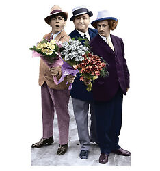 Three Stooges - Flowers - Life Size Standup/cutout Brand New - 555