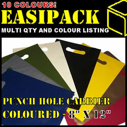 Coloured And039punch Hole Handleand039 8 X 12 Carrier Boutique Party Bags -50mu 200g