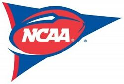 College Sports Fan Premium 28x40 Double Sided House Team Banner Flag