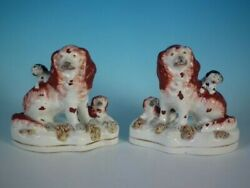 Pair Staffordshire Pottery Spaniels With Pups