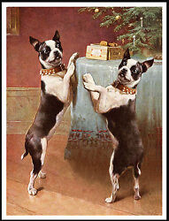 BOSTON TERRIER DOGS AND CHRISTMAS TREE LOVELY VINTAGE STYLE DOG PRINT POSTER