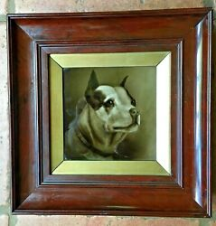 England Bulldog Framed Plaque Sherwin And Cotton