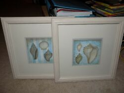 Sea Shells By Annie Lapoint, Printed Wall Art, Ready To Hang Framed Euc