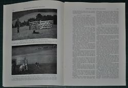 1940 SHEEPDOG TRIALS in Wales magazine article Cambrian Stakes Border Collies