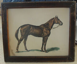 1940's Ned Chase Portrait Man O' War Thoroughbred Horse Racing Litho Catskills
