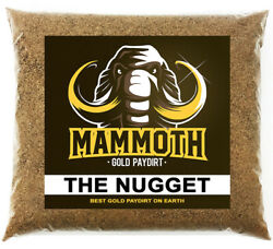 Mammoth Paydirt And039the Nuggetand039 - Gold Paydirt Concentrate Panning Pay Dirt