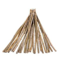 Natural Bamboo Pole Plant Stake Support 25-pack 1/2 In. X 6 Ft. Garden Stakes