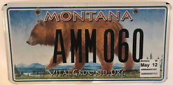Wildlife Grizzly Bear License Plate Yellowstone Glacier National Park