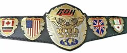 Ring Of Honor Wrestling Championship Belt Leather 2mm Plated Adult Replica New