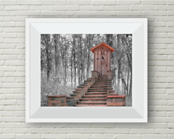 Outhouse Throne Bathroom Home Décor Grey Beige Photo Picture 8x10 No Frame