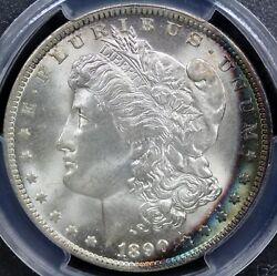1890-o Morgan Silver Dollar Pcgs Ms65 Stunning Turquoise And Red Brilliant