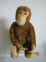 Vintage Schuco Yes-no 20 Chimp Monkey Largest Size Made Rust Mohair Works
