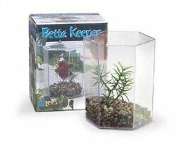 Leeand039s Betta Keeper With Lid Gravel And Plant - Small