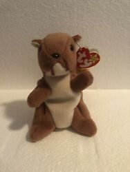 Retired Original Ty Beanie Baby Nuts The Squirrel - Pvc Tag Errors And Rare