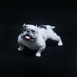1/6 Scale Bully Dog Pitbull Model Figurine For 12in Action Figures Toy Soldier