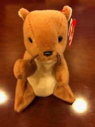 Nuts 1996 Ty Beanie Baby In Mint Condition, Brown