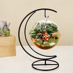 2Pcs Iron Wrought Holder Unique Exquisite Durable Hanging Glass Terrarium